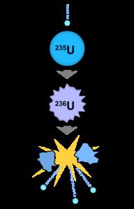 Fisjon. Tunge atomkjerner spaltes, og blir til mindre kjerner, nøytroner - og varme.